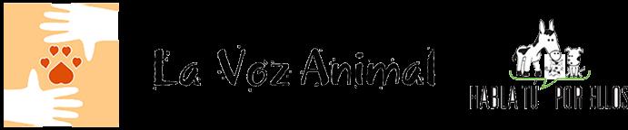 Tienda Solidaria La Voz Animal